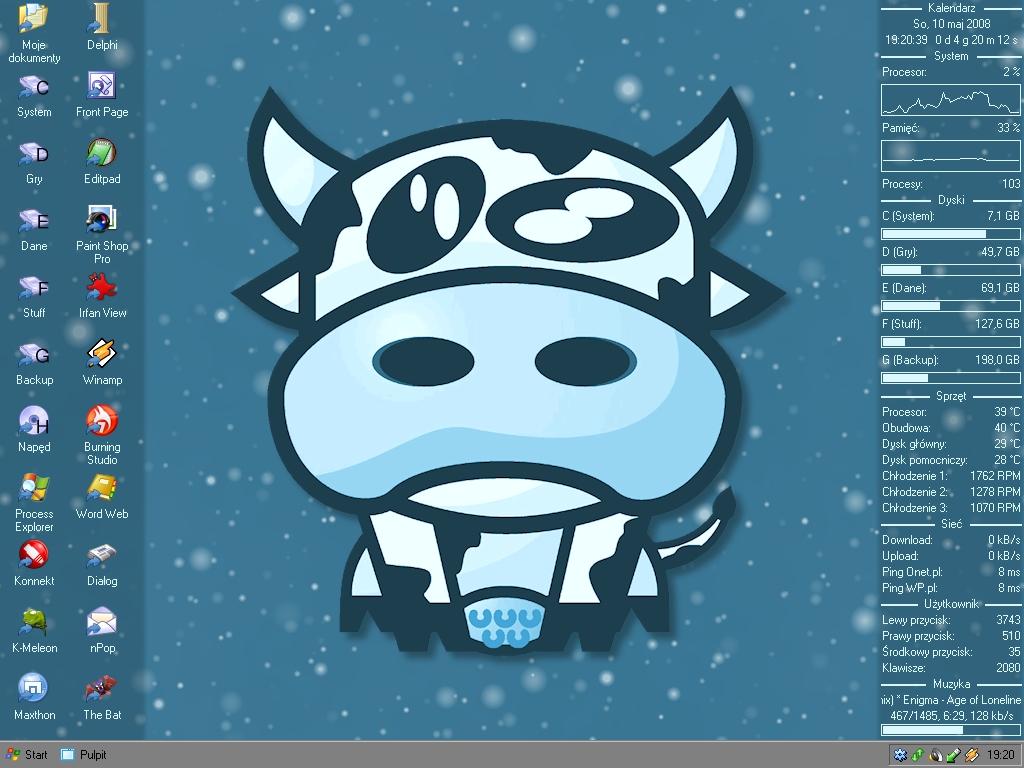 Title: Cow theme